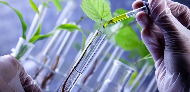 فارماکو گنوزی - علم داروشناسی گیاهی و جانوری